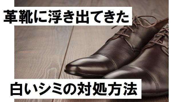 21aoyamakenichi-radio